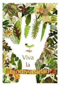 Biodiversité biodiversity biodiversidad